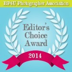 BP4U_Editors_Choice_Badge